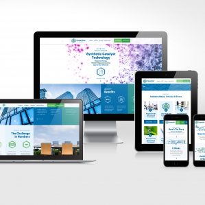 Website design and development for Essential Energy, a global distributor of IceCOLD® Technology.