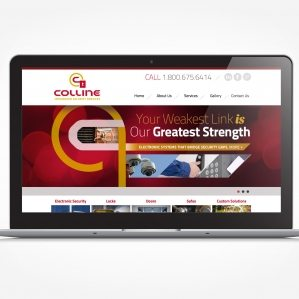 Web design for security services located in Roselle Park, NJ.