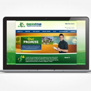 Web design for a pest control service in Virginia.